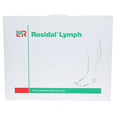 ROSIDAL Lymph Bein klein 1 Stück - Vorderseite