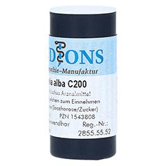 BRYONIA ALBA C 200 Einzeldosis Globuli 0.5 Gramm N1 - Rechte Seite