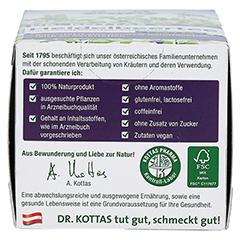 DR.KOTTAS Heidelbeertee Filterbeutel 20 Stück - Rechte Seite