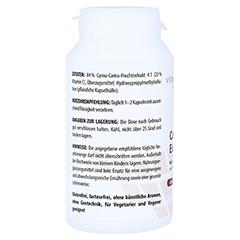 CAMU CAMU EXTRAKT 500 mg Kapseln 120 Stück - Rechte Seite