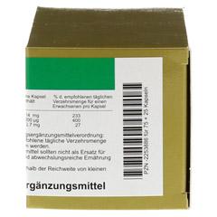 BIOTIN+ZINK Kapseln 75 Stück - Rechte Seite