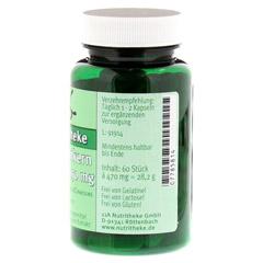 TRAUBENKERNEXTRAKT 150 mg Kapseln 60 Stück - Rechte Seite