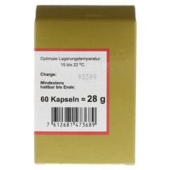 VITAMIN B12 KAPSELN 60 Stück - Rechte Seite