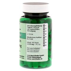 L-LYSIN 500 mg Kapseln 60 Stück - Rechte Seite