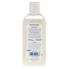 Dr. Theiss Nachtkerzen Shampoo 200 Milliliter - Rückseite