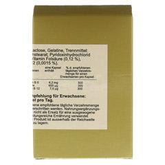 Vitamin B12 + B6 + Folsäure Komplex N Kapseln 60 Stück - Rückseite