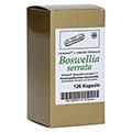 BOSWELLIA SERRATA L.ind.Weihrauch Kapseln 120 Stück N1