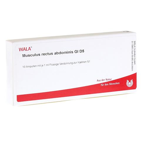 MUSCULUS RECTUS abdominis GL D 5 Ampullen 10x1 Milliliter N1