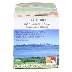 H&S Detox Vitaltee Filterbeutel 20 Stück - Rechte Seite