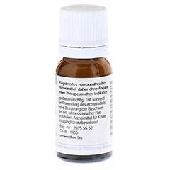 LYTTA vesicatoria Cantharis D 6 Globuli 10 Gramm N1 - Rückseite
