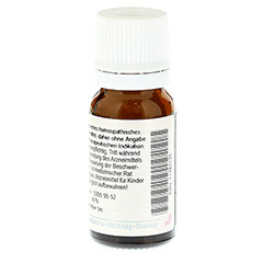 NATRIUM CHLORATUM C 200 Globuli 10 Gramm - Rückseite