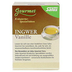 INGWER VANILLE Tee Bio Salus Filterbeutel 15 Stück - Vorderseite
