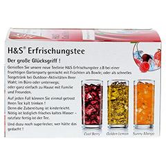 H&S Cool Berry Filterbeutel 20 Stück - Rückseite