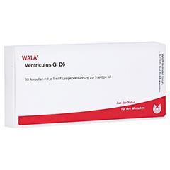 VENTRICULUS GL D 6 Ampullen 10x1 Milliliter N1