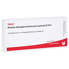 MEDULLA OBLONGATA Ventriculus quartus GL D 15 Amp. 10x1 Milliliter N1