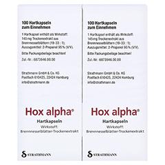 Hox alpha 200 Stück - Rechte Seite