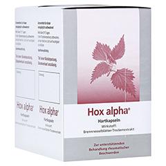 Hox alpha 200 Stück
