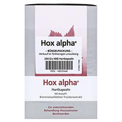Hox alpha 200 Stück - Vorderseite