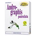ANDROGRAPHIS paniculata Kapseln 60 Stück