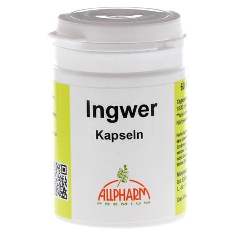 INGWER KAPSELN 300 mg 60 Stück