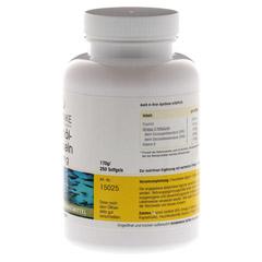 FISCHÖL Kapseln 500 mg 250 Stück - Vorderseite