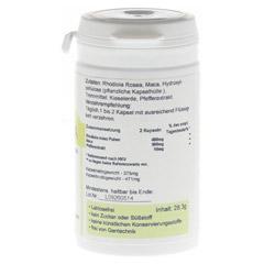 RHODIOLA ROSEA 3% Vegi Kapseln 60 Stück - Vorderseite