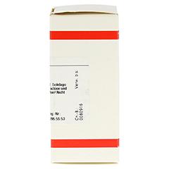 SOLIDAGO VIRGAUREA D 30 Tabletten 80 Stück - Rechte Seite