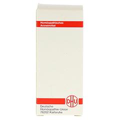 SOLIDAGO VIRGAUREA D 30 Tabletten 80 Stück - Rückseite
