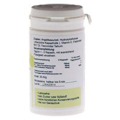DONG QUAI Vegi Kapseln 500 mg 60 Stück - Rechte Seite