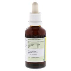 Koriander Extrakt Bio 23% V/V 50 Milliliter - Rechte Seite