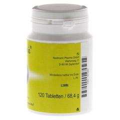 CILANTRIS Tabletten 120 Stück - Rechte Seite
