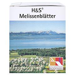 H&S Melissenblätter 20 Stück - Rechte Seite