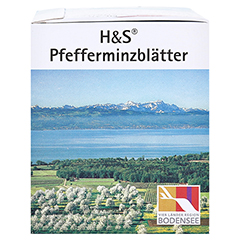 H&S Pfefferminzblätter 20 Stück - Rechte Seite