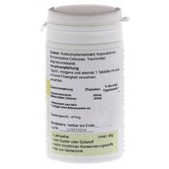 KUDZU Tabletten 120 Stück - Rechte Seite