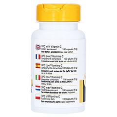OPC 200 Bioflavonoide Kapseln 100 Stück - Rechte Seite