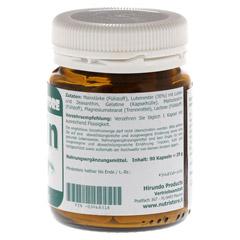 LUTEIN 20 mg Kapseln 90 Stück - Rechte Seite