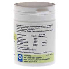 PANGAM Vitamin B15 Vegi Kapseln 180 Stück - Rechte Seite