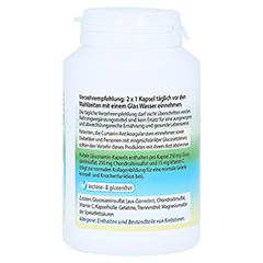 GLUCOSAMIN Chondroitin Kapseln 120 Stück - Rechte Seite