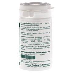 GRAPEFRUIT KERN Extrakt 400 mg Kapseln 60 Stück - Rechte Seite