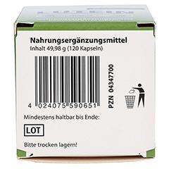 LUTEIN KAPSELN 6 mg+Heidelbeer 120 Stück - Unterseite
