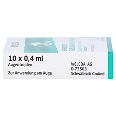 Euphrasia D3 Einzeldosis-Augentropfen 10x0.4 Milliliter N1 - Linke Seite