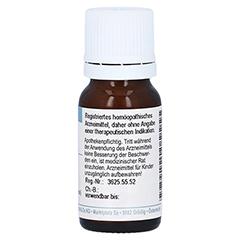 RUMEX CRISPUS D 6 Globuli 10 Gramm N1 - Rückseite