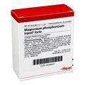 MAGNESIUM PHOSPHORICUM INJEEL forte Ampullen 10 Stück N1