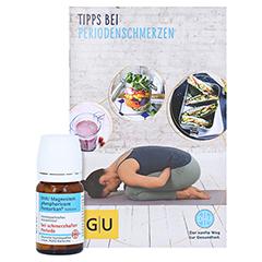 DHU Magnesium phos.Pentarkan Periodenschmerz Tabl. + gratis G&U Rezeptbuch 80 Stück N1