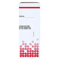 EPHEDRINUM hydrochloricum D 6 Dilution 20 Milliliter - Rechte Seite