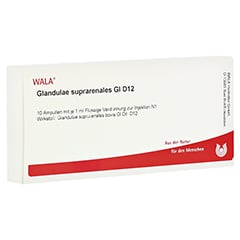 GLANDULAE SUPRARENALES GL D 12 Ampullen 10x1 Milliliter N1