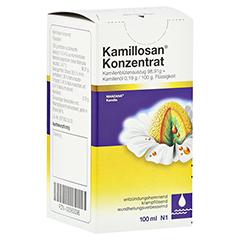 Kamillosan 100 Milliliter N1