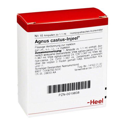 AGNUS CASTUS INJEEL Ampullen 10 Stück N1