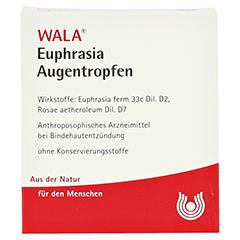 EUPHRASIA AUGENTROPFEN 5x0.5 Milliliter N1 - Vorderseite