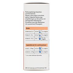 Ambroxol-ratiopharm Hustensaft 250 Milliliter N3 - Linke Seite
